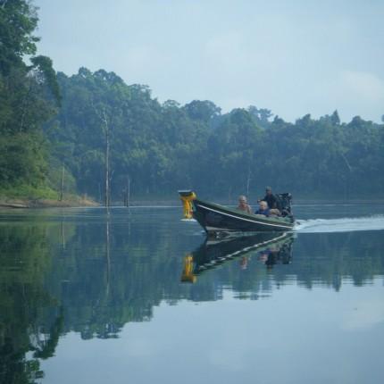 Navigation dans la jungle Thaïlandaise