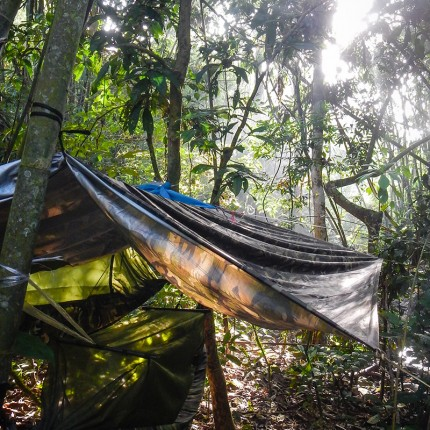 Jungle camp, khao Sok